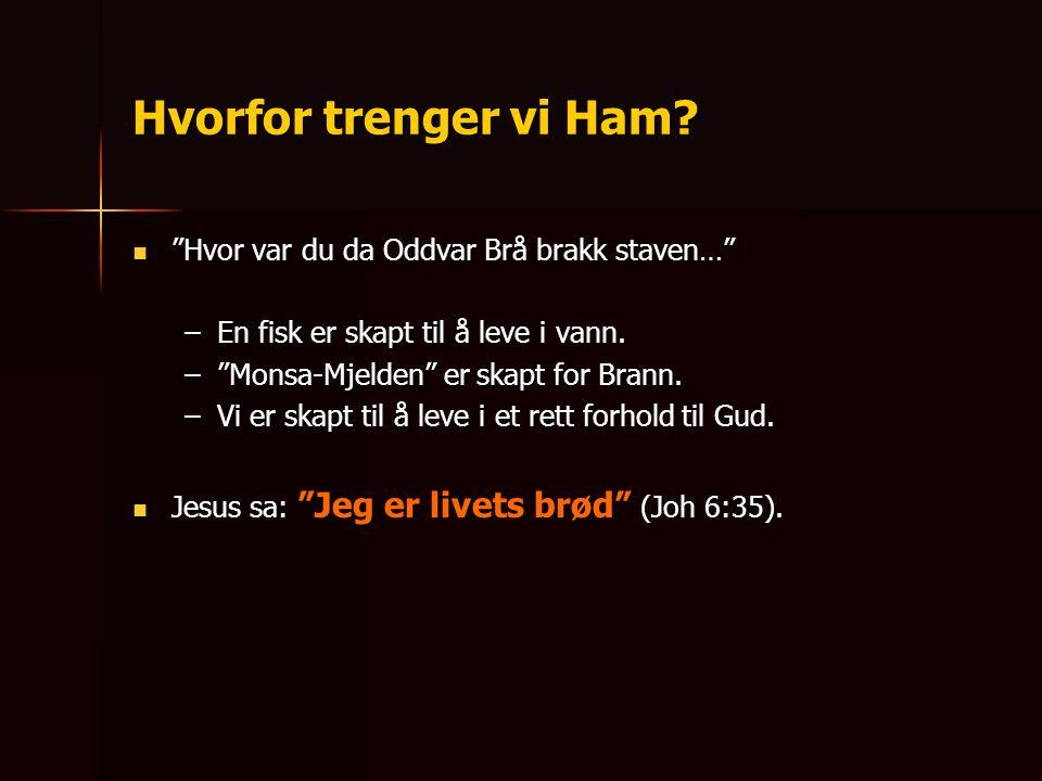 """Hvorfor trenger vi Ham?  """"Hvor var du da Oddvar Brå brakk staven…"""" –En fisk er skapt til å leve i vann. –""""Monsa-Mjelden"""" er skapt for Brann. –Vi er s"""