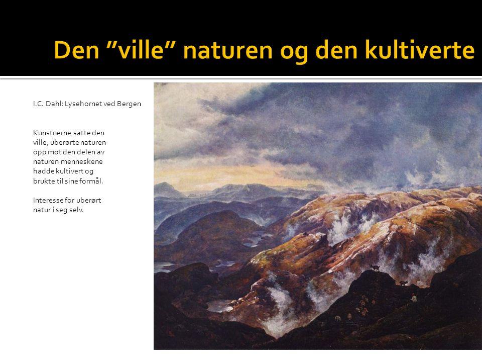 I.C. Dahl: Lysehornet ved Bergen Kunstnerne satte den ville, uberørte naturen opp mot den delen av naturen menneskene hadde kultivert og brukte til si