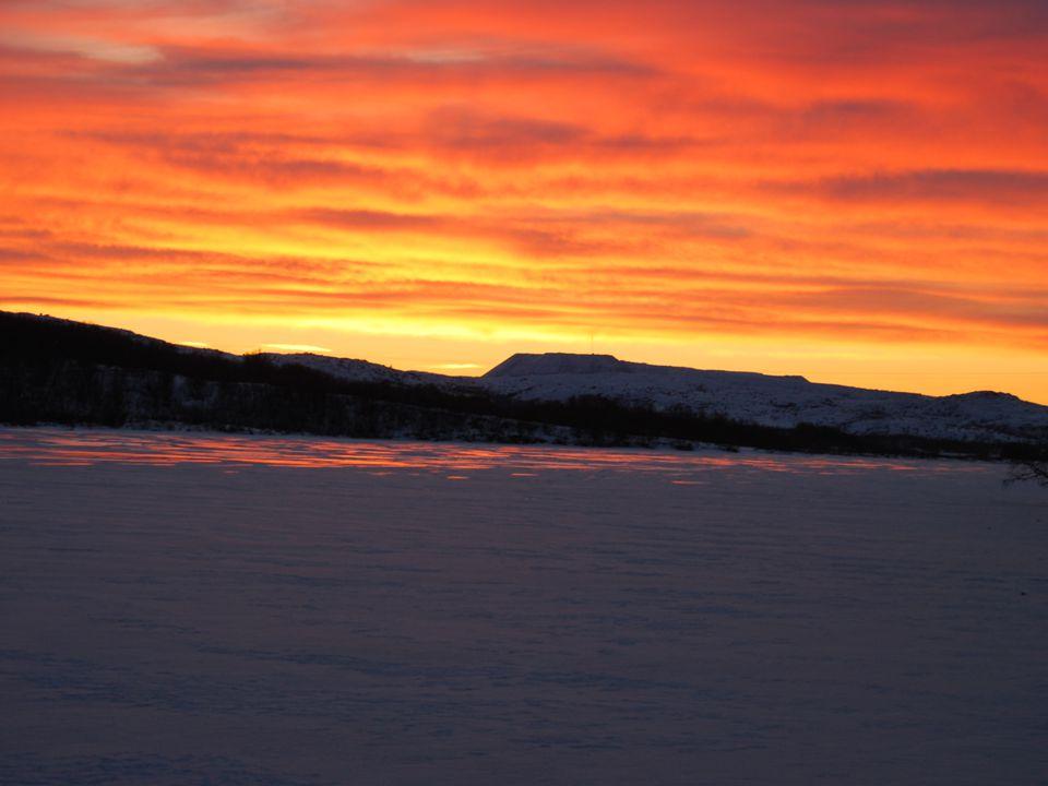 Vi regner mer:  Gjennomsnittpris Finnmark-Tromsø kr 2.500,- (3.000,-).