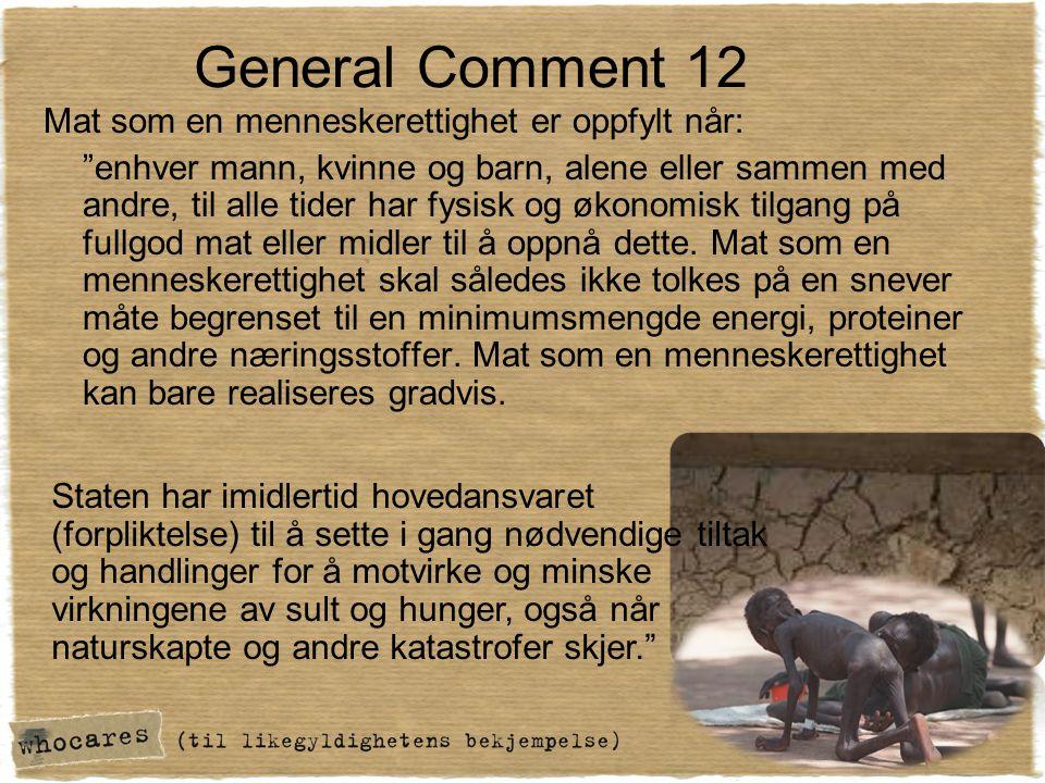 """General Comment 12 Mat som en menneskerettighet er oppfylt når: """"enhver mann, kvinne og barn, alene eller sammen med andre, til alle tider har fysisk"""