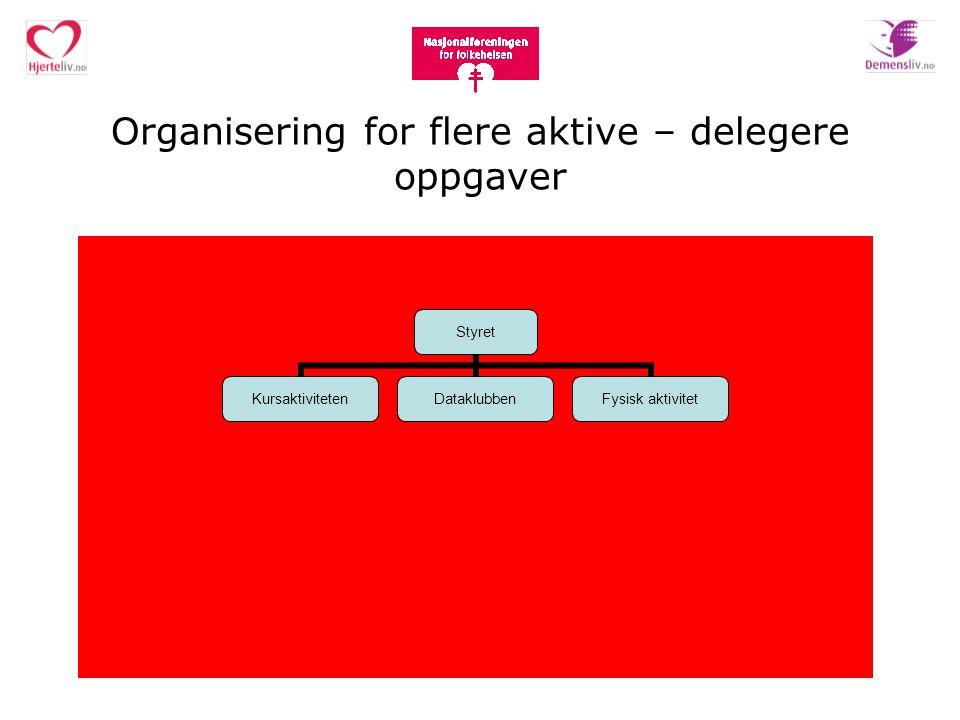 Organisering for flere aktive – delegere oppgaver Styret KursaktivitetenDataklubbenFysisk aktivitet