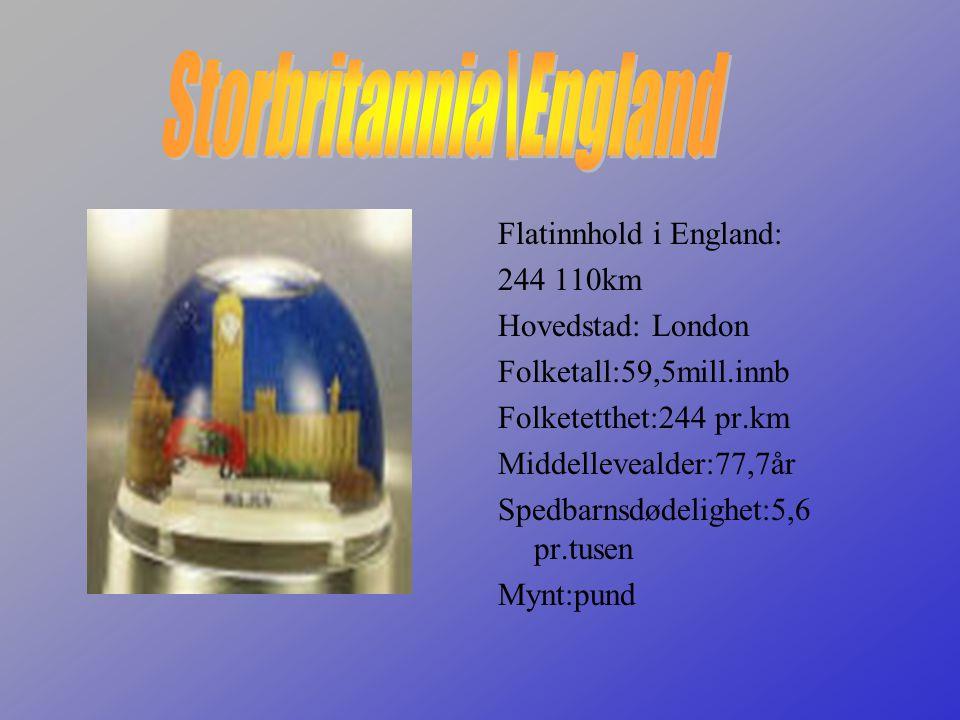 •England, den sørlige delen av Storbritannia, med 130 439 km2, ca. 49,5 mill. innb., herav nesten 12 mill. i Stor-London. E. utgjør kjerneområdet i St