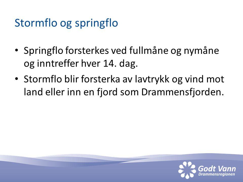 Stormflo og springflo • Springflo forsterkes ved fullmåne og nymåne og inntreffer hver 14.