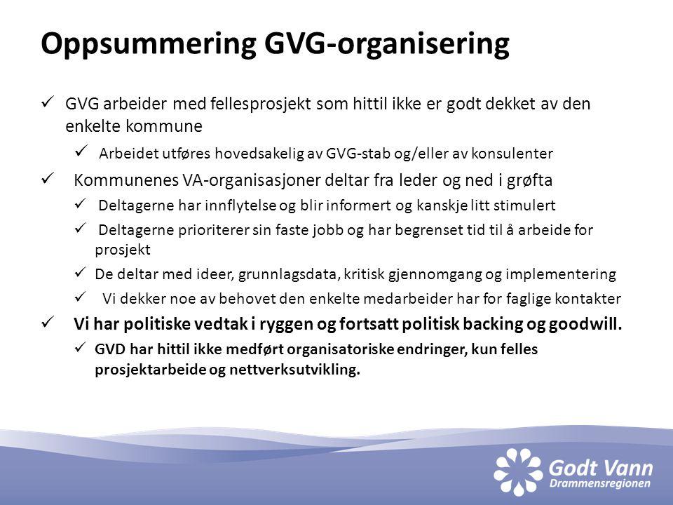 Oppsummering GVG-organisering  GVG arbeider med fellesprosjekt som hittil ikke er godt dekket av den enkelte kommune  Arbeidet utføres hovedsakelig