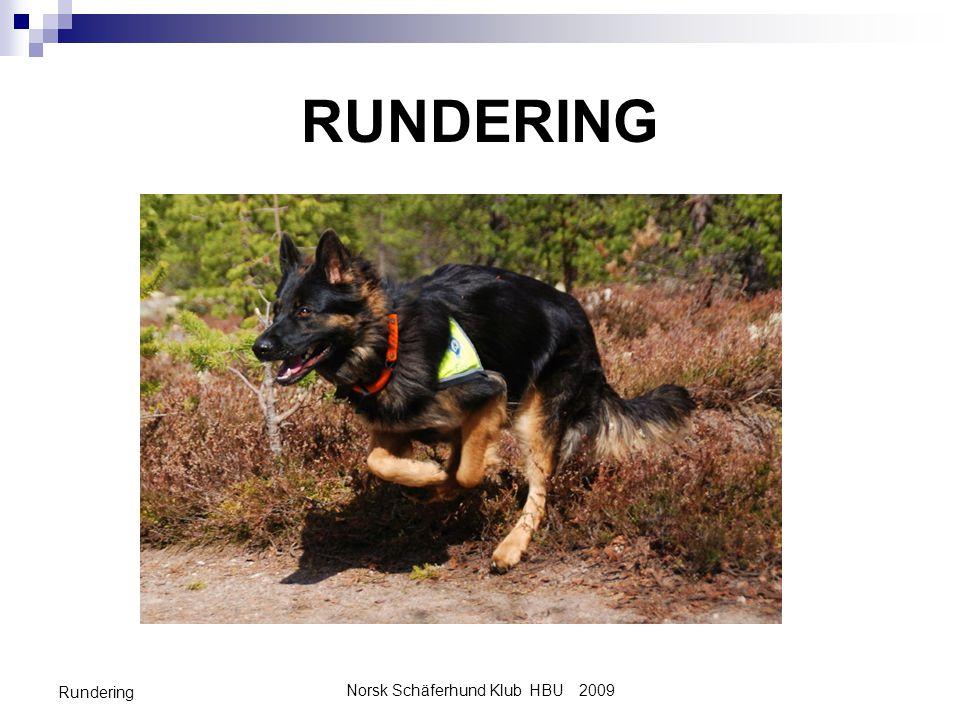 Norsk Schäferhund Klub HBU 2009 Rundering MÅLSETNING MED FASE II Lære hunden alle momenter i øvelsen «rundering».
