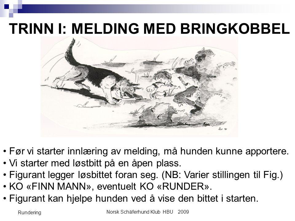 Norsk Schäferhund Klub HBU 2009 Rundering TRINN I: MELDING MED BRINGKOBBEL • Før vi starter innlæring av melding, må hunden kunne apportere. • Vi star