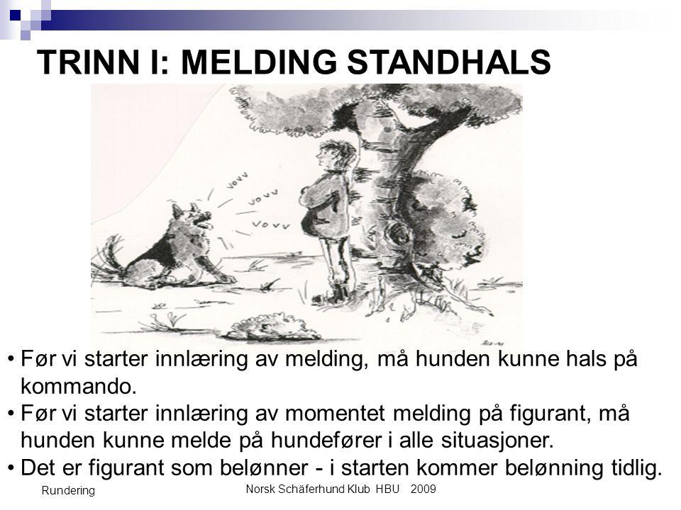 Norsk Schäferhund Klub HBU 2009 Rundering TRINN I: MELDING STANDHALS •Før vi starter innlæring av melding, må hunden kunne hals på kommando. •Før vi s
