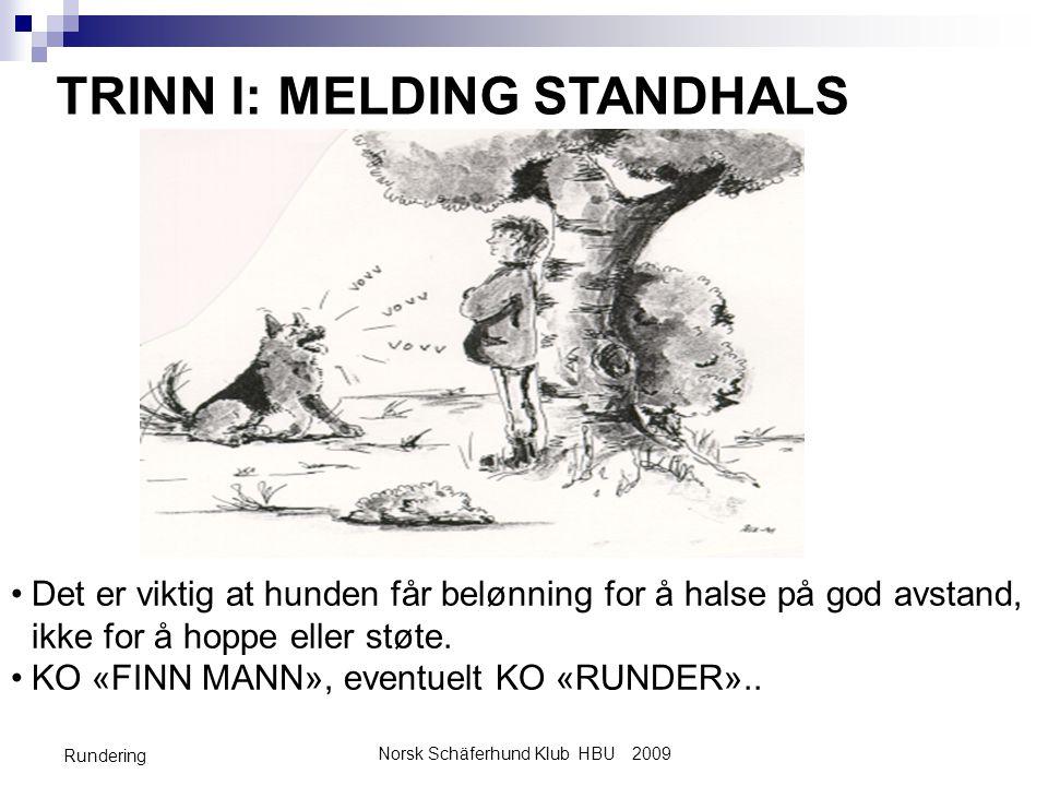 Norsk Schäferhund Klub HBU 2009 Rundering TRINN I: MELDING STANDHALS •Det er viktig at hunden får belønning for å halse på god avstand, ikke for å hoppe eller støte.