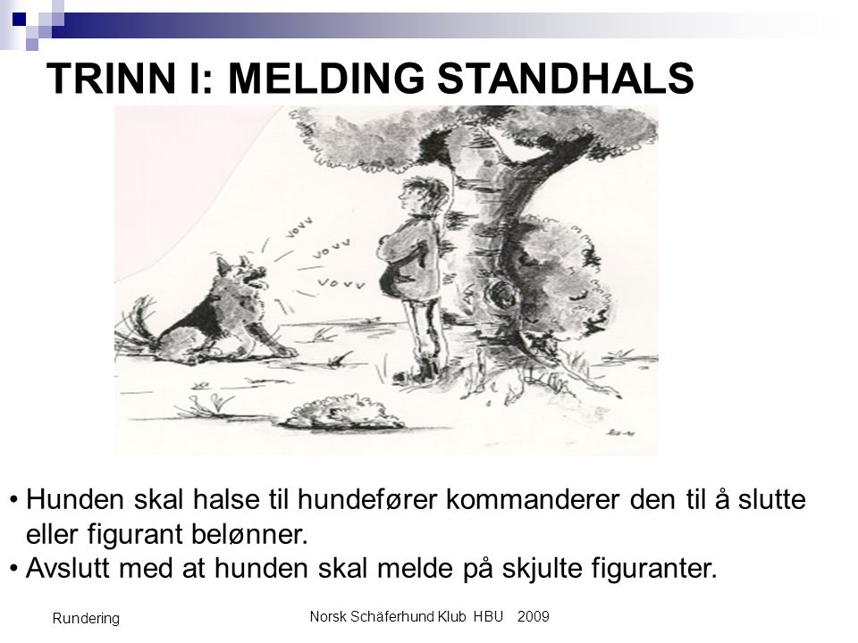Norsk Schäferhund Klub HBU 2009 Rundering TRINN I: MELDING STANDHALS •Hunden skal halse til hundefører kommanderer den til å slutte eller figurant belønner.