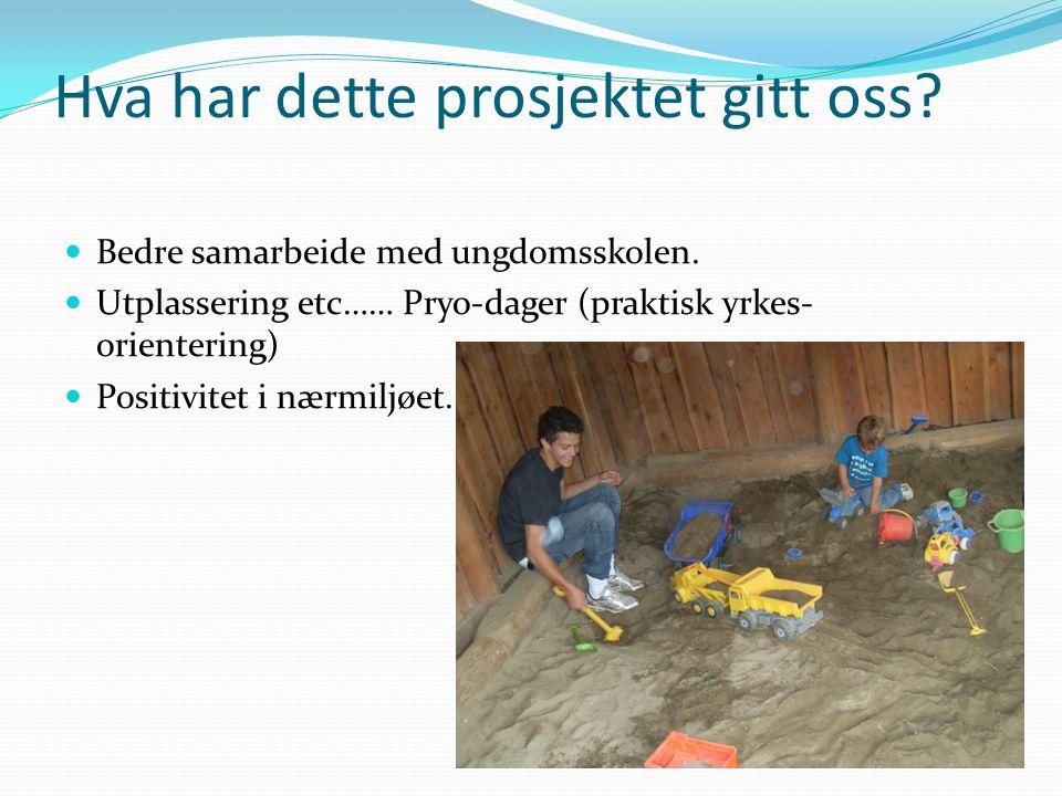Hva har dette prosjektet gitt oss?  Bedre samarbeide med ungdomsskolen.  Utplassering etc…… Pryo-dager (praktisk yrkes- orientering)  Positivitet i