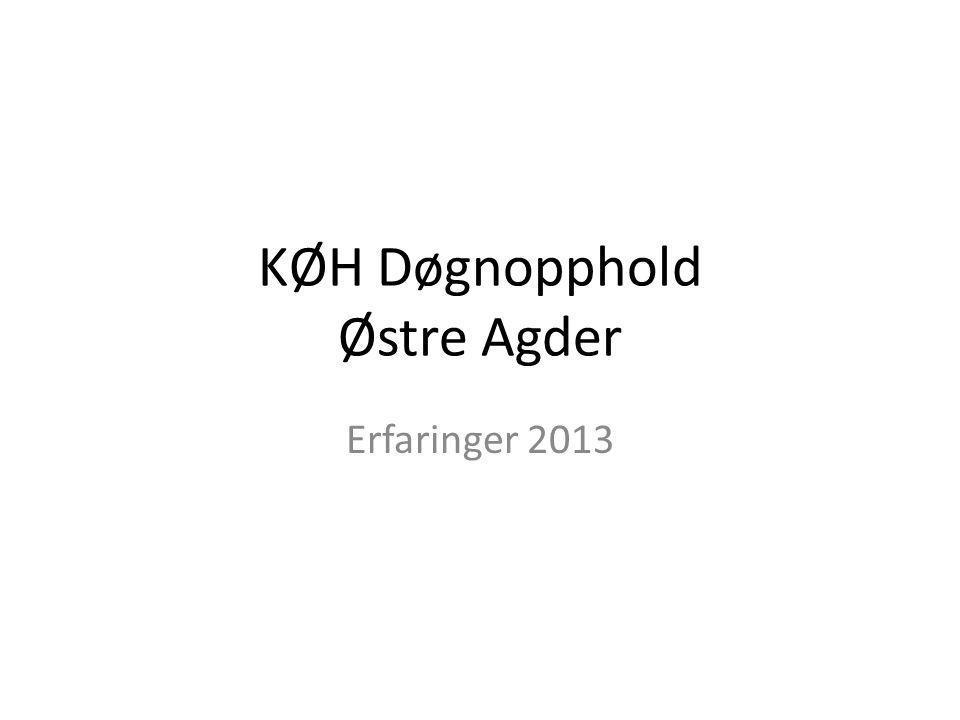 KØH Døgnopphold Østre Agder Erfaringer 2013