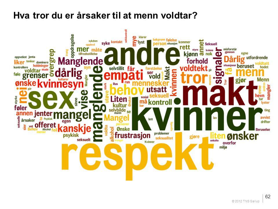 Insert your text here Hva tror du er årsaker til at menn voldtar? 62 © 2012 TNS Gallup