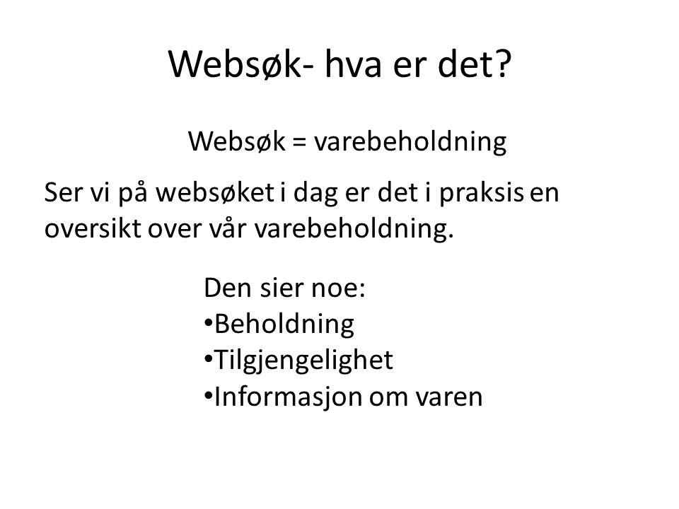 Websøk- hva er det.
