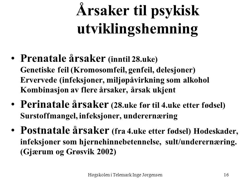Høgskolen i Telemark Inge Jørgensen16 Årsaker til psykisk utviklingshemning •Prenatale årsaker (inntil 28.uke) Genetiske feil (Kromosomfeil, genfeil,