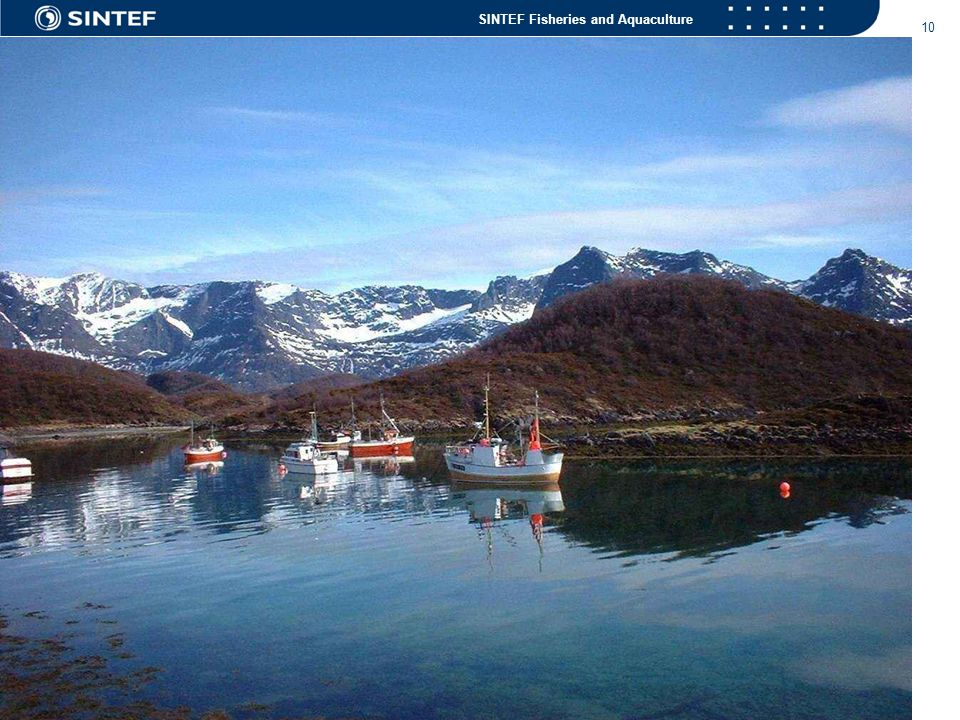 SINTEF Fisheries and Aquaculture 10