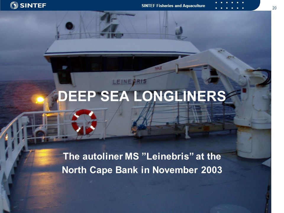 SINTEF Fisheries and Aquaculture 20 DEEP SEA LONGLINERS The autoliner MS Leinebris at the North Cape Bank in November 2003