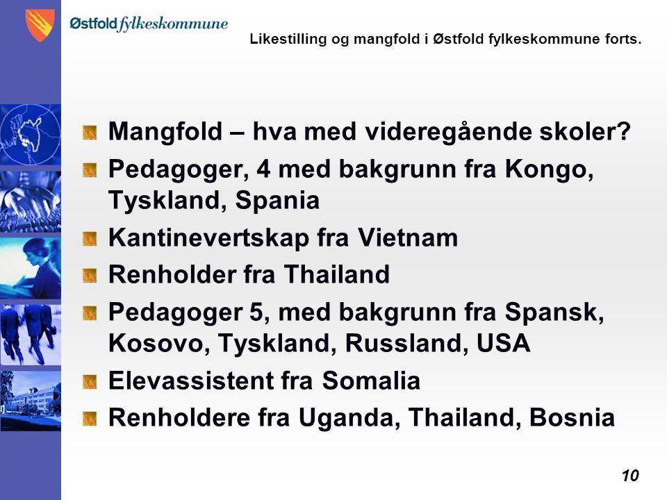 10 Likestilling og mangfold i Østfold fylkeskommune forts. Mangfold – hva med videregående skoler? Pedagoger, 4 med bakgrunn fra Kongo, Tyskland, Span