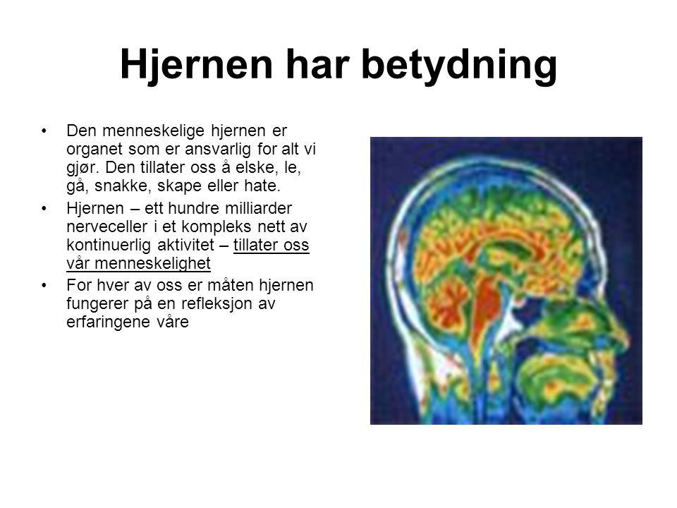 Hjernen har betydning •Den menneskelige hjernen er organet som er ansvarlig for alt vi gjør. Den tillater oss å elske, le, gå, snakke, skape eller hat