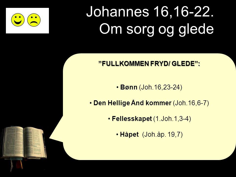 """Johannes 16,16-22. Om sorg og glede """"FULLKOMMEN FRYD/ GLEDE"""": • Bønn (Joh.16,23-24) • Den Hellige Ånd kommer (Joh.16,6-7) • Fellesskapet (1.Joh.1,3-4)"""