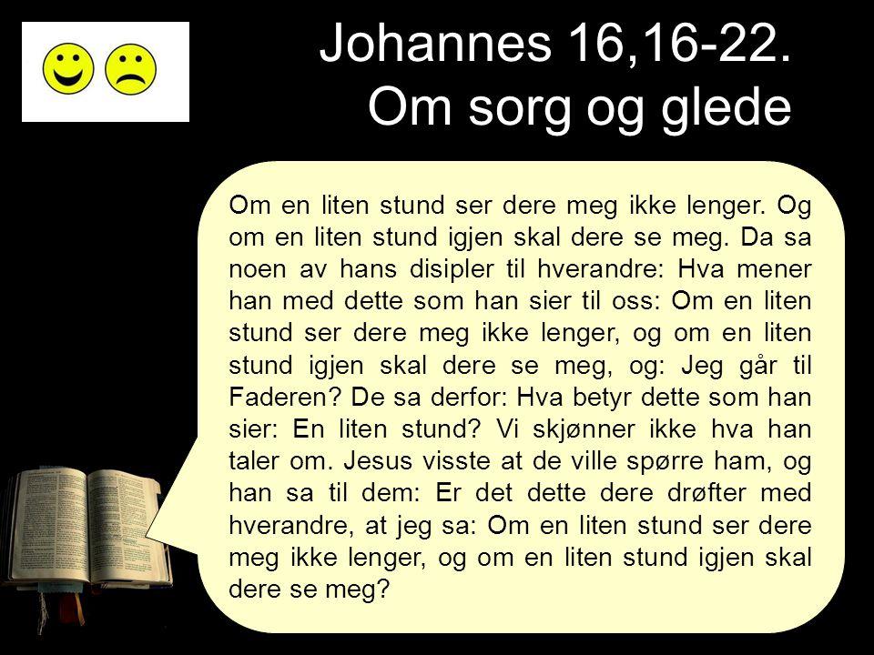 Johannes 16,16-22. Om sorg og glede Om en liten stund ser dere meg ikke lenger. Og om en liten stund igjen skal dere se meg. Da sa noen av hans disipl