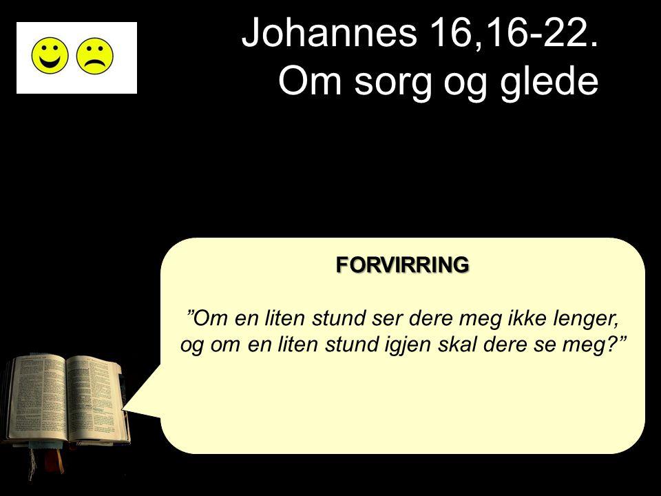 """Johannes 16,16-22. Om sorg og glede FORVIRRING """"Om en liten stund ser dere meg ikke lenger, og om en liten stund igjen skal dere se meg?"""""""