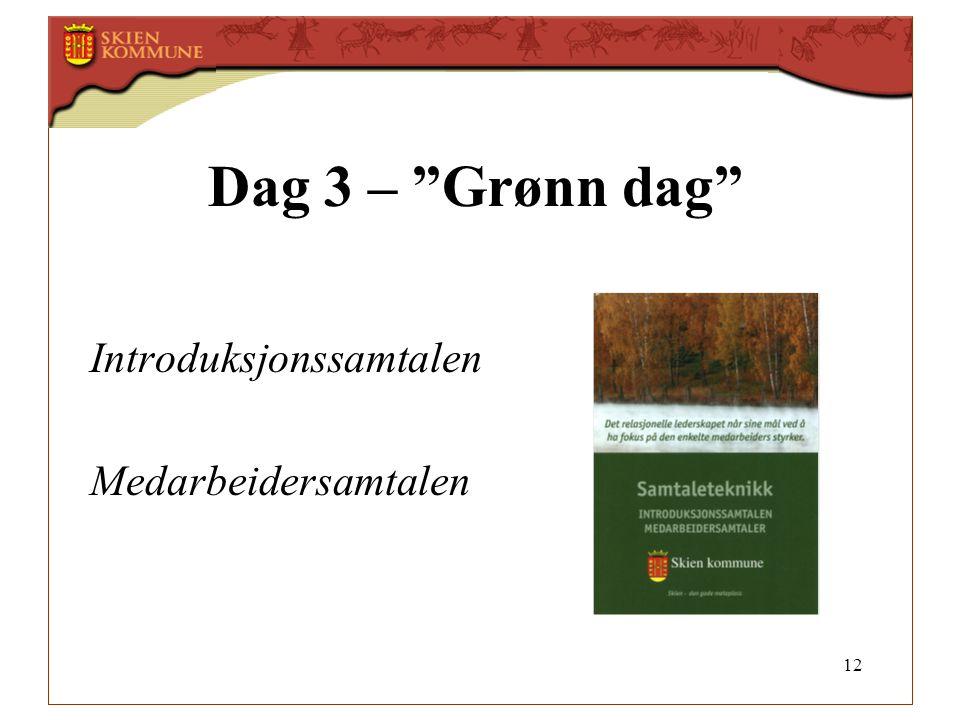 12 Dag 3 – Grønn dag Introduksjonssamtalen Medarbeidersamtalen