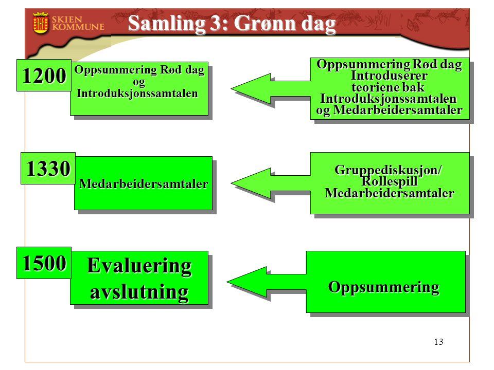 13 Samling 3: Grønn dag Oppsummering Rød dag ogIntroduksjonssamtalen ogIntroduksjonssamtalen MedarbeidersamtalerMedarbeidersamtaler Introduserer teori