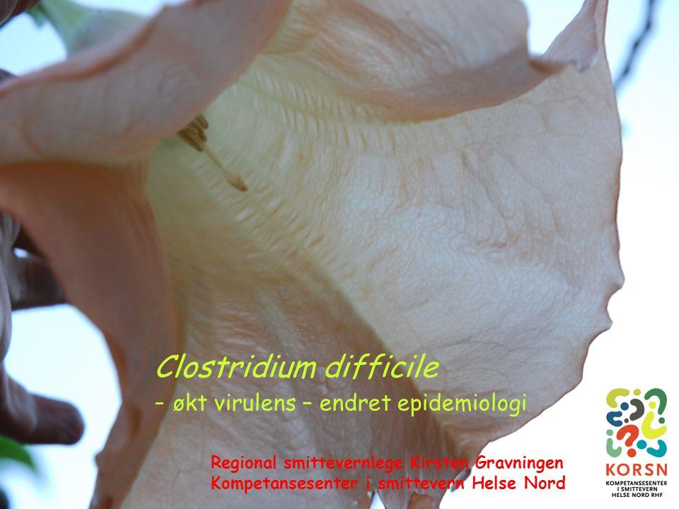SUSH-møte 7. mai 20081 Clostridium difficile - økt virulens – endret epidemiologi Regional smittevernlege Kirsten Gravningen Kompetansesenter i smitte
