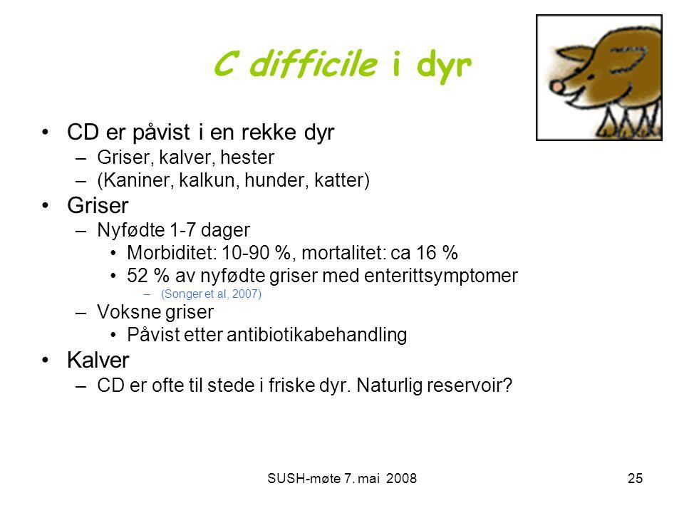SUSH-møte 7. mai 200825 C difficile i dyr •CD er påvist i en rekke dyr –Griser, kalver, hester –(Kaniner, kalkun, hunder, katter) •Griser –Nyfødte 1-7