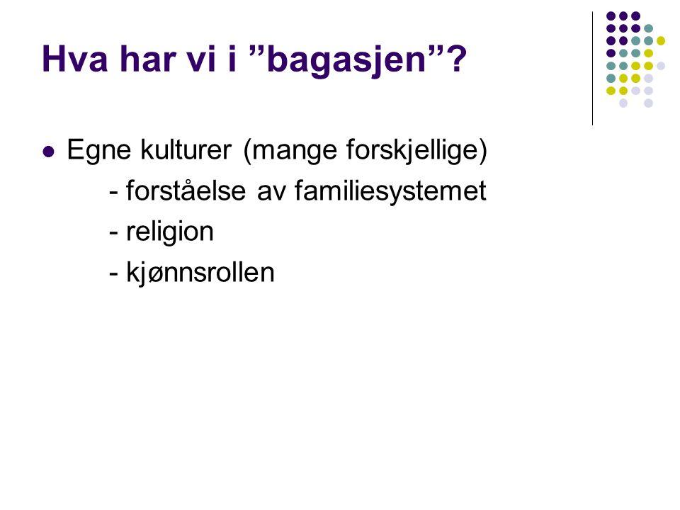"""Hva har vi i """"bagasjen""""?  Egne kulturer (mange forskjellige) - forståelse av familiesystemet - religion - kjønnsrollen"""