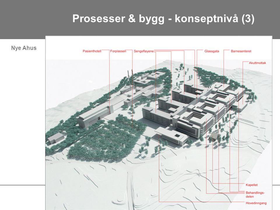 Nye Ahus Prosesser & bygg - konseptnivå (3)