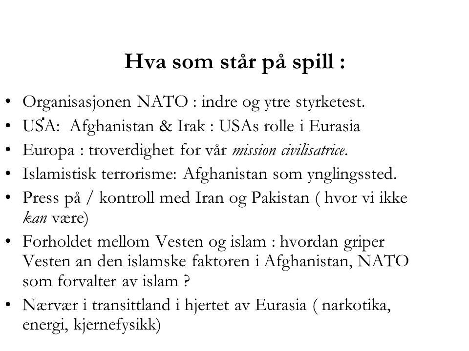 Hva som står på spill :.•Organisasjonen NATO : indre og ytre styrketest.