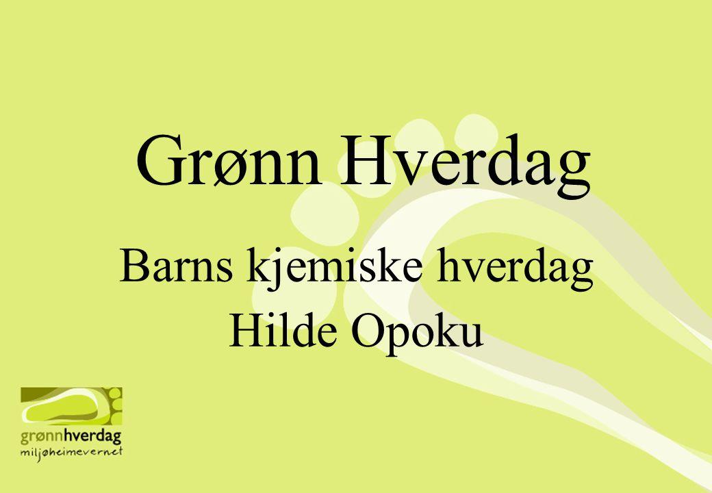 Grønn Hverdag Barns kjemiske hverdag Hilde Opoku