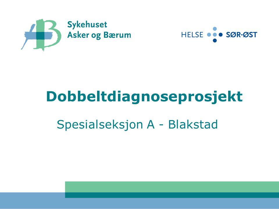 Dobbeltdiagnoseprosjekt Spesialseksjon A - Blakstad