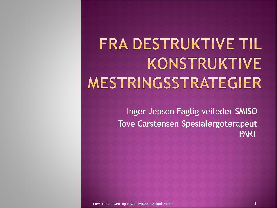 Inger Jepsen Faglig veileder SMISO Tove Carstensen Spesialergoterapeut PART Tove Carstensen og Inger Jepsen 12.juni 2009 1