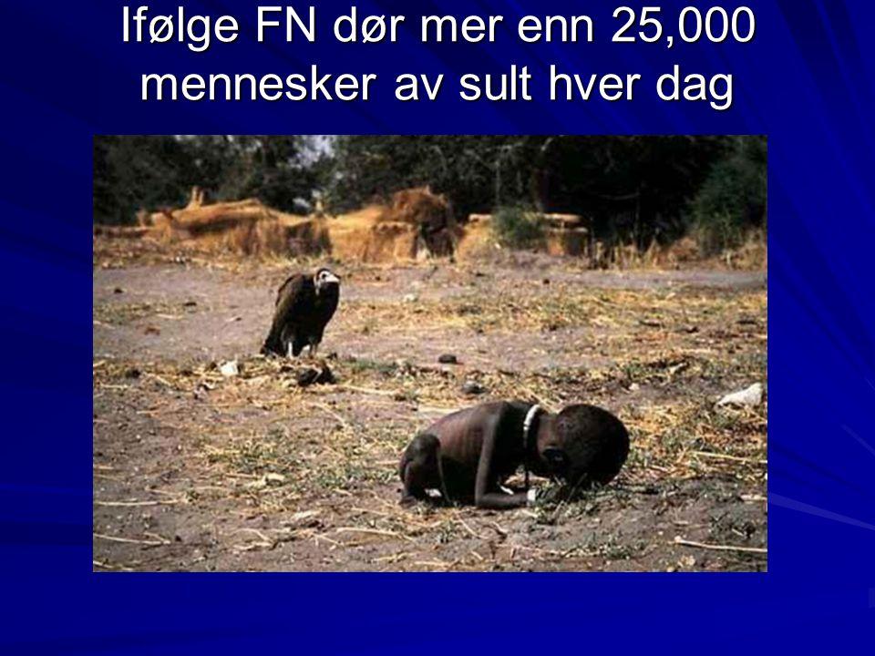 Ifølge FN dør mer enn 25,000 mennesker av sult hver dag