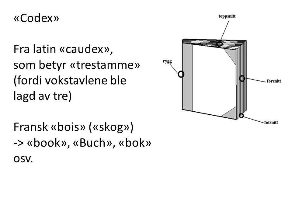 «Codex» Fra latin «caudex», som betyr «trestamme» (fordi vokstavlene ble lagd av tre) Fransk «bois» («skog») -> «book», «Buch», «bok» osv.