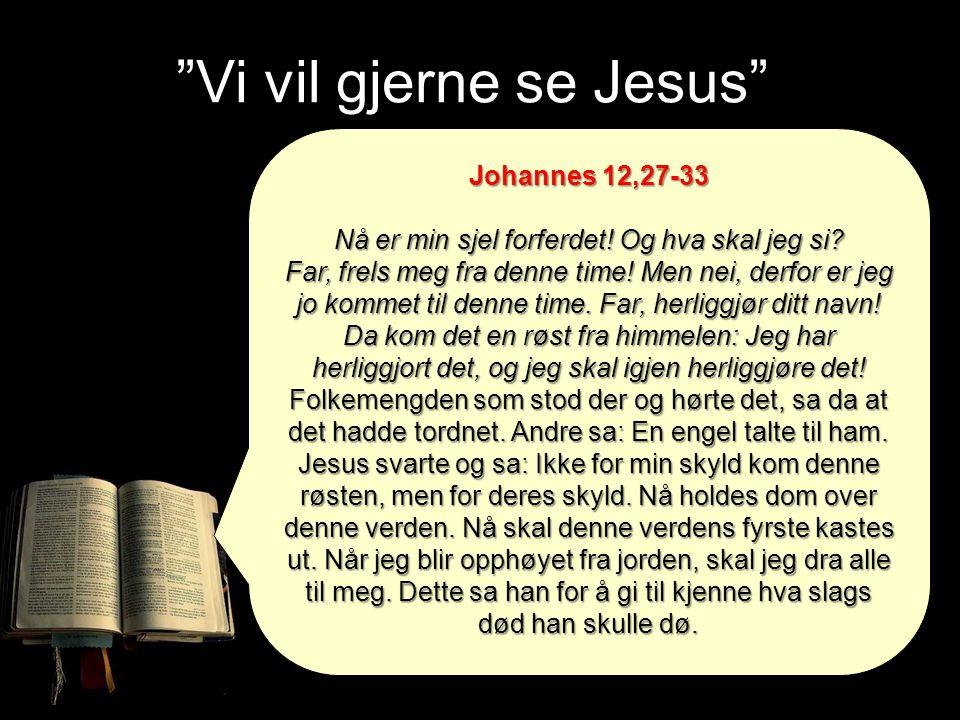 """""""Vi vil gjerne se Jesus"""" Johannes 12,27-33 Nå er min sjel forferdet! Og hva skal jeg si? Far, frels meg fra denne time! Men nei, derfor er jeg jo komm"""