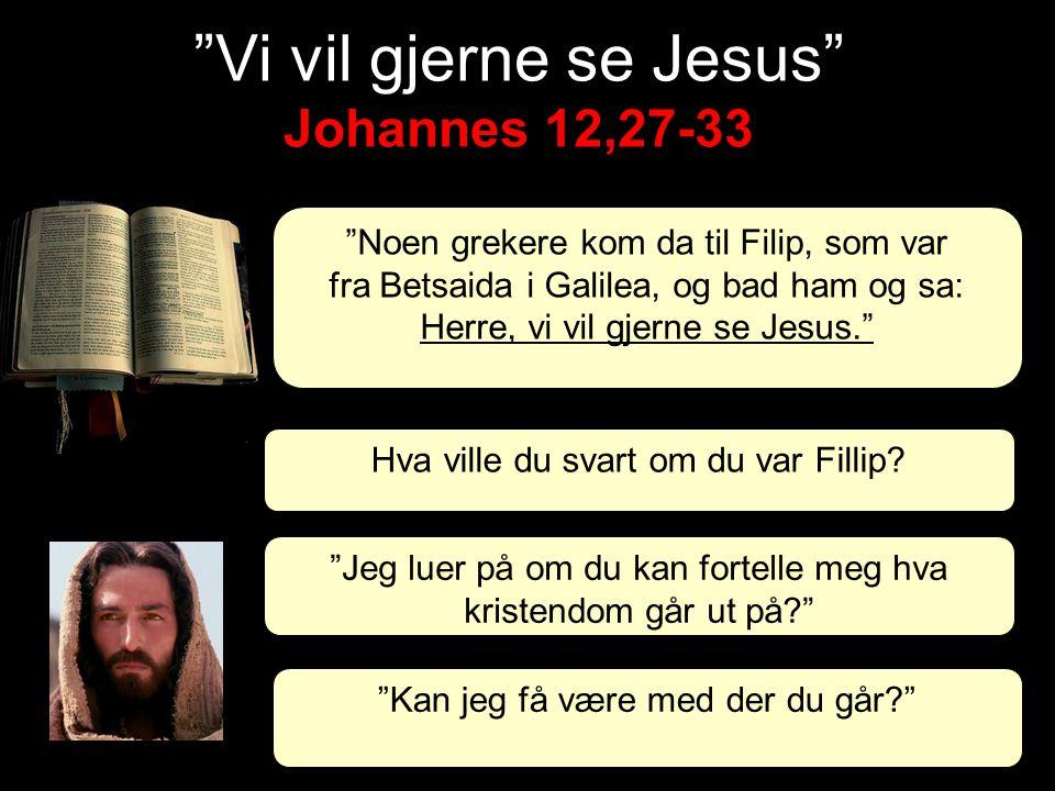 """Johannes 12,27-33 """"Vi vil gjerne se Jesus"""" Johannes 12,27-33 """"Noen grekere kom da til Filip, som var fra Betsaida i Galilea, og bad ham og sa: Herre,"""