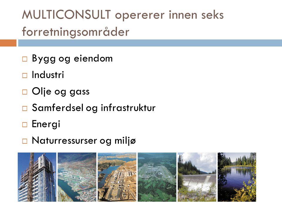 MULTICONSULT opererer innen seks forretningsområder  Bygg og eiendom  Industri  Olje og gass  Samferdsel og infrastruktur  Energi  Naturressurse