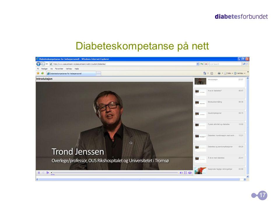 Diabeteskompetanse på nett 17