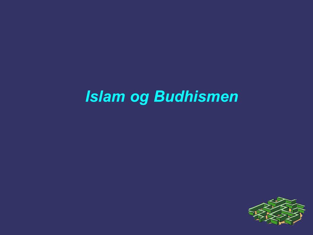 Islam og Budhismen