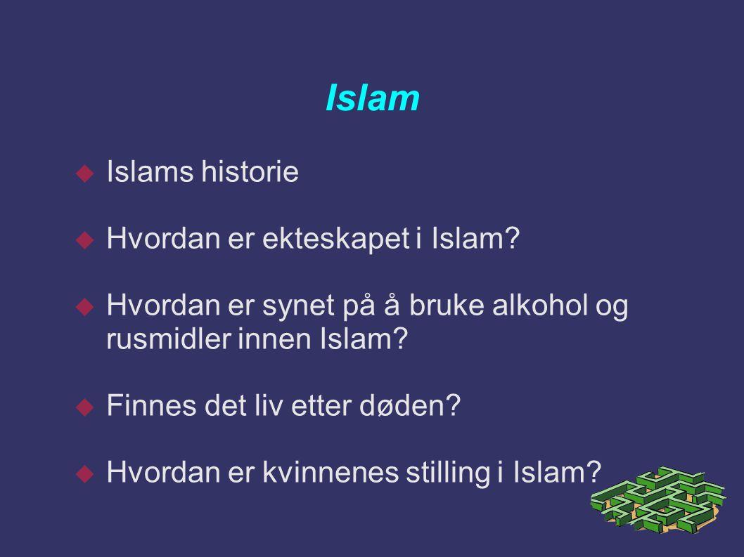 Islam  Islams historie  Hvordan er ekteskapet i Islam?  Hvordan er synet på å bruke alkohol og rusmidler innen Islam?  Finnes det liv etter døden?