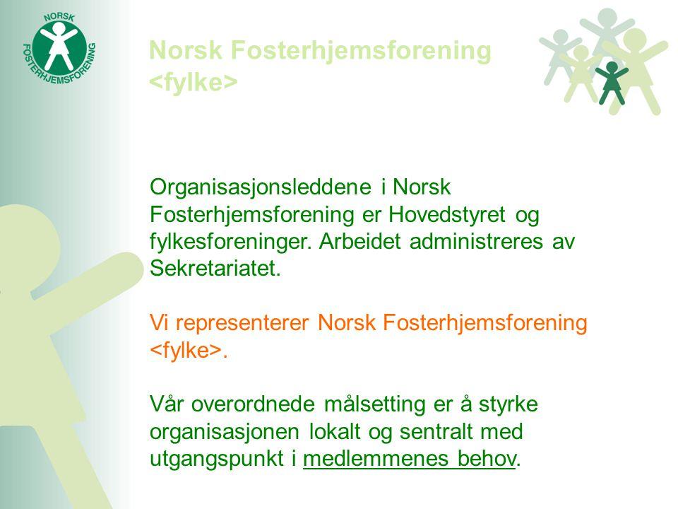 Organisasjonsleddene i Norsk Fosterhjemsforening er Hovedstyret og fylkesforeninger. Arbeidet administreres av Sekretariatet. Vi representerer Norsk F