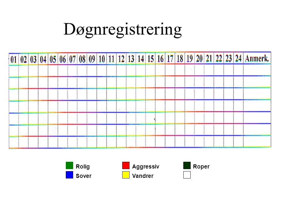 Døgnregistrering Rolig Sover Aggressiv Vandrer Roper