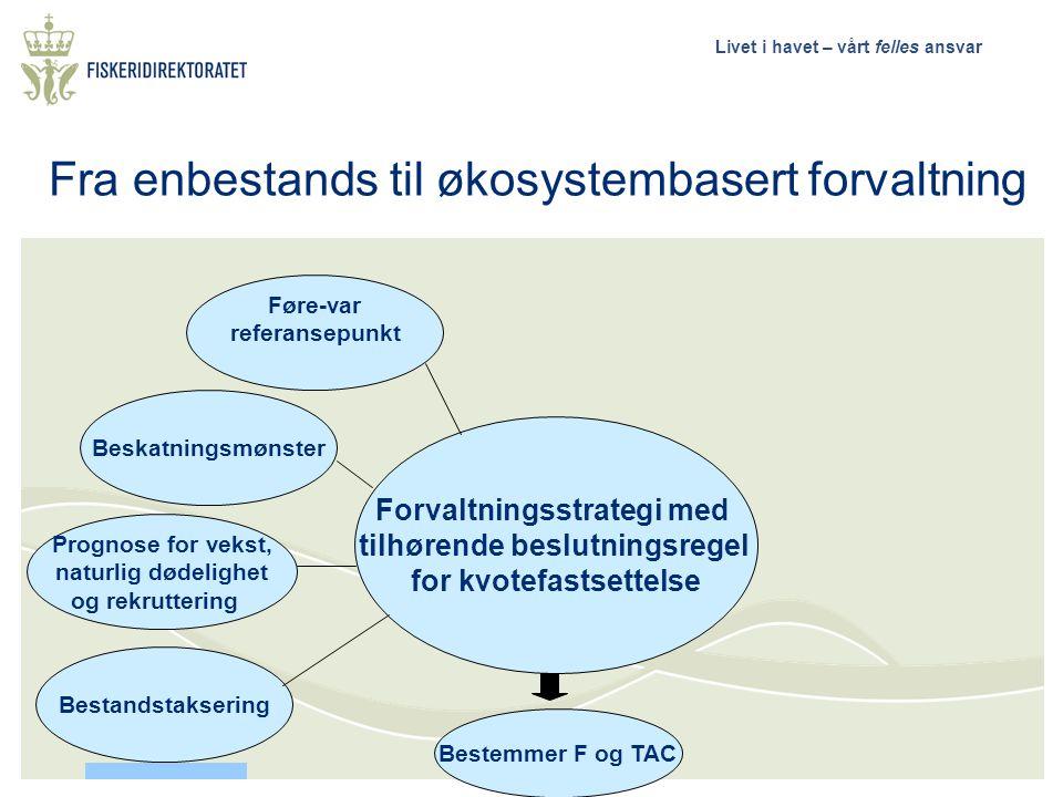 Livet i havet – vårt felles ansvar Føre-var referansepunkt Forvaltningsstrategi med tilhørende beslutningsregel for kvotefastsettelse Bestemmer F og T