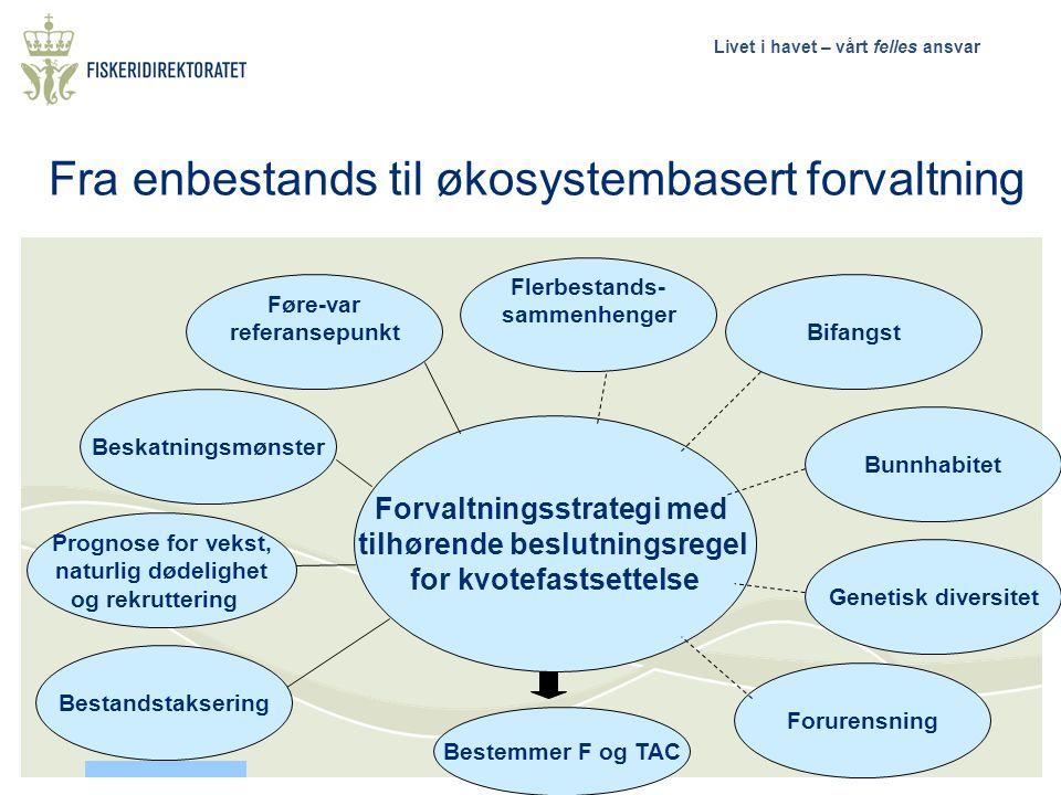 Livet i havet – vårt felles ansvar Føre-var referansepunkt Beskatningsmønster Forvaltningsstrategi med tilhørende beslutningsregel for kvotefastsettel