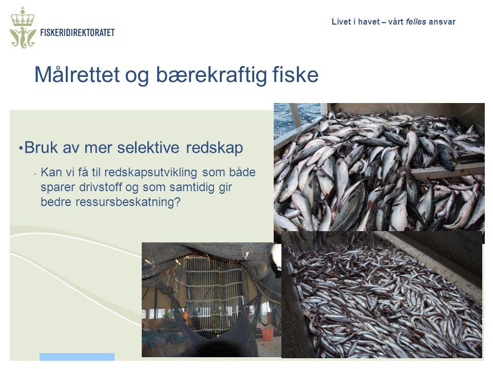 Livet i havet – vårt felles ansvar Målrettet og bærekraftig fiske • Bruk av mer selektive redskap - Kan vi få til redskapsutvikling som både sparer dr