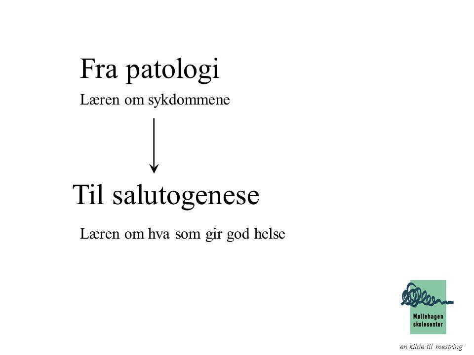 Fra patologi Til salutogenese en kilde til mestring Læren om sykdommene Læren om hva som gir god helse