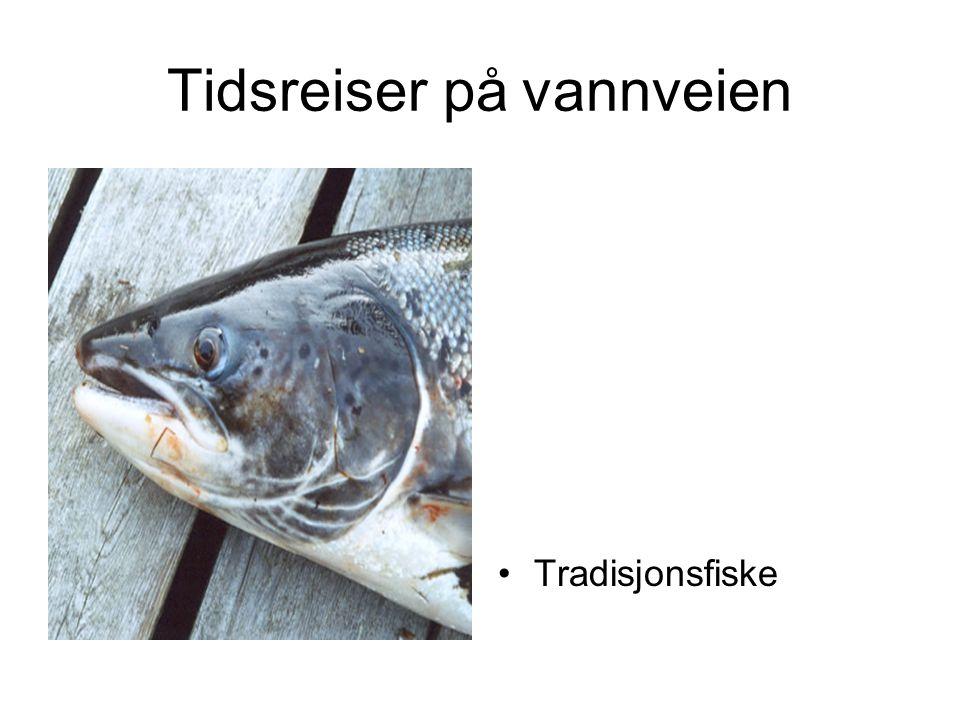 Tidsreiser på vannveien •Tradisjonsfiske